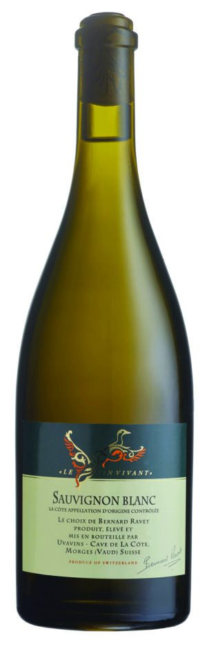 Sauvignon Blanc Collection Bernard Ravet